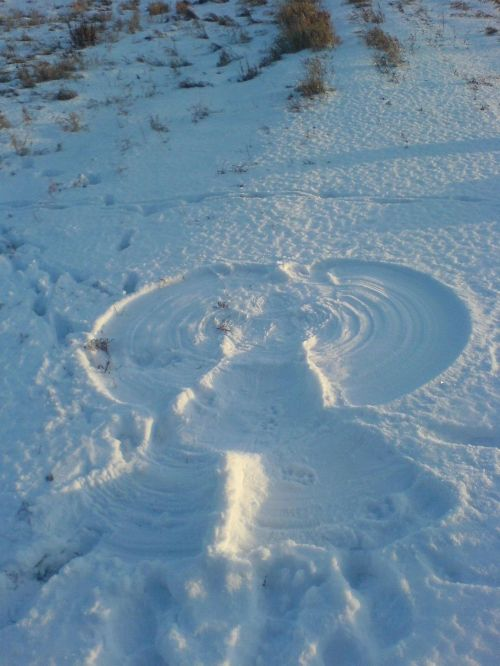 Snow_angel_small