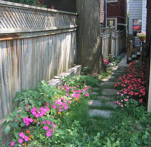 Back_flowers